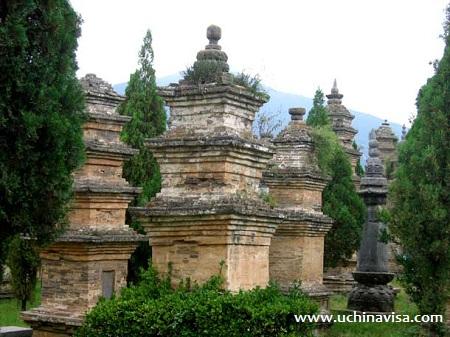 Shaolin Temple, Pagoda Frest