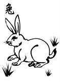 Wood Rabbit