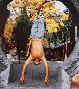 Shaolin  Wushu (Wu Shu)